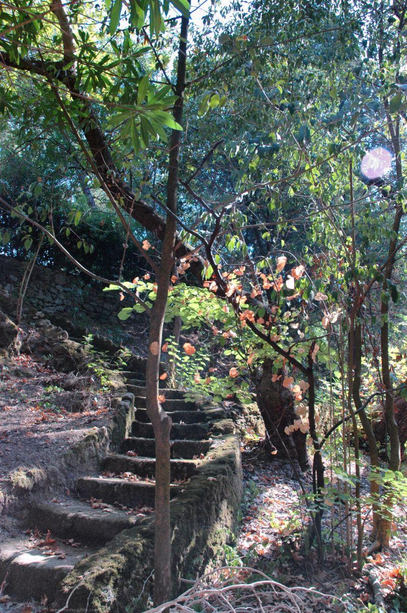 Rodini Park © Rhodes Guide / RhodesGuide.com